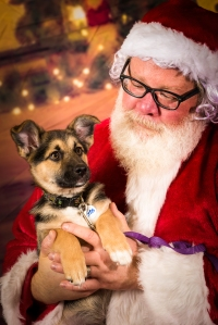Shortly after Eros talked with Santa, he was adopted!!